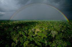 Brasil rainbow por Yann Arthus-Bertrand