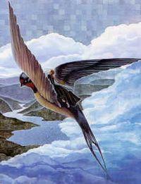 Thumbelina_on_back_of_Bird by Arlene Graston