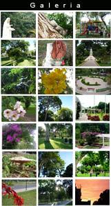 Galeria fotografica Parque Castilla - Lince